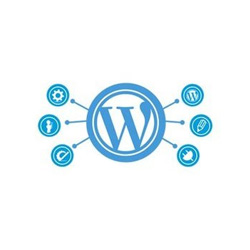 wordpress web designing service